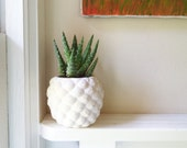 Pineapple planter, pineapple shaped pot, Succulent planter, tropical decor, candle holder, if you like Pina coladas