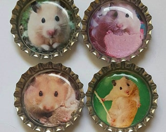 Hamster Magnets hamster gifts cute hamsters