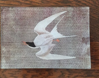 "Decoupage Glass Tray ""Tern"""