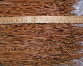 """4 lbs Longleaf Pine Needles 9 - 17"""" for Basket Weaving, Coiling, Gourd Crafts, Extra-Long Pine Needles from Southeastern US Longleaf Pines"""