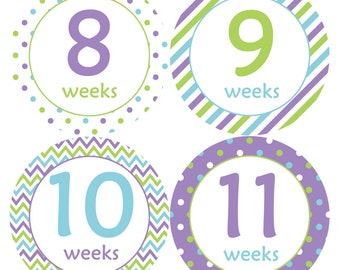 Pregnancy Milestone Stickers - Monthly Pregnancy Stickers - Baby Belly Stickers - Maternity Photo Props – Pregnancy Growth Sticker Props 929