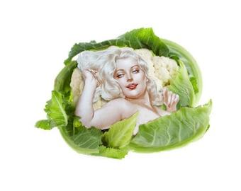 Cauliflower Dreaming