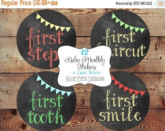 ON SALE Monthly Baby Milestone Stickers Baby Boy Monthly Stickers Baby Age Stickers Boy Monthly Bodysuit Stickers Baby Stickers Baby Month S