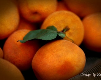 Fruit Photography - Fine Art Photography - Apricots
