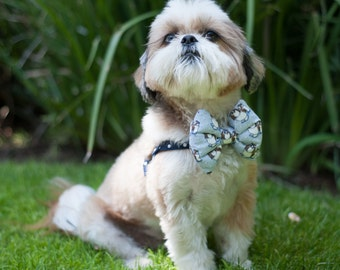 The Cooper // Dog Harness w/ Bow Tie, bow-tie, male dog harness, easy on dog harness, slip on dog harness, shih tzu harness, shitzu harness