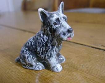 Branksome Scottish Terrier