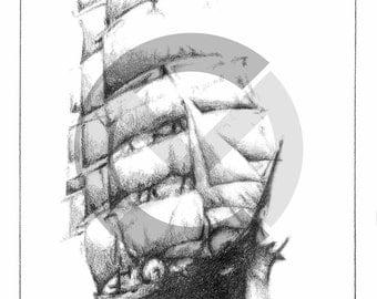 Wild Wave Clipper Ship Print