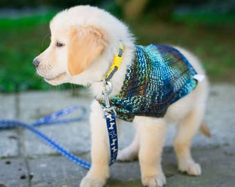 Handknit Cat & Dog Sweater Beaded Rib Pattern in Superwash Merino, Colorway Edgewater - size XXSmall - READY TO SHIP