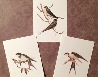 Set of 12 Handmade Vintage Print Swifts and Swallows Bird Note Cards