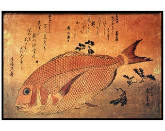 """Old Japanese print. Red fish. From the series """"Fish"""". Hiroshige. Japanese antique art. Fine art."""