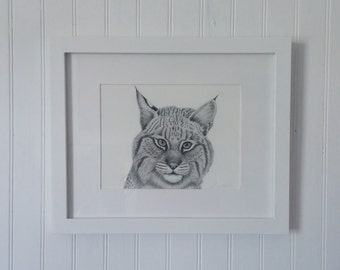 Bobcat Limited Edition Giclee Print