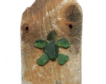Sea Glass Turtle on Driftwood Plaque - Turtle Wall Art - Green Sea Turtle - Wall Art - Wall Decor - House Warming Gift - Upcycled - Recycled