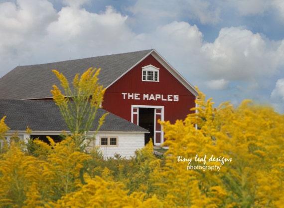 The Maples Sutton MA original photography