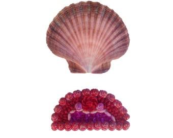 Red & Pink Seashell Barrette