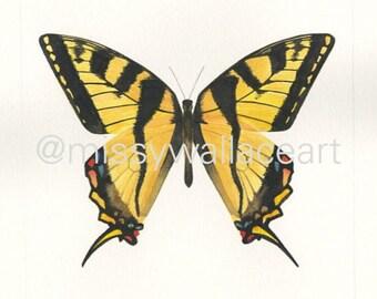 Butterfly #19 (Original)