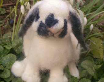 Baby rabbit with lop ears in needle felt