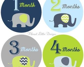 Monthly Stickers Boy, Milestone Stickers, Month Stickers, Baby Month Stickers, Baby Stickers, Elephant, Chevron #29