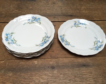 Vintage Porcelain Walbrzych Luncheon Plates