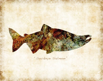 Sockeye Salmon Watercolor Freshwater Fish Art Print Signed by Dan Morris, Choose print size, Option to mount print to come ready to hang