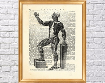 Anatomy muscle man printed on Vintage Dictionary Book Page, Poster, Wall Decoration, Vintage Print, Room Decor