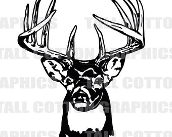 WHITE TAIL DEER 10 Point Buck Vinyl Decal Sticker decor #WL017