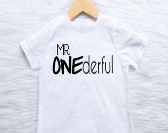 CUSTOMIZABLE COLORS boys 1st first mr. oneferful birthday shirt boho wild one 2