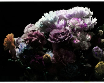 hand coloured floral photographic print #3