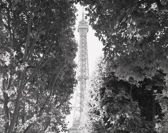 Eiffel Tower- Paris Fine Art Print