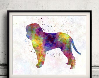 Romagna Water Dog in watercolor 8x10 in. to 12x16 in. Fine Art Print  Poster Decor Home Watercolor Illustration - SKU 1270
