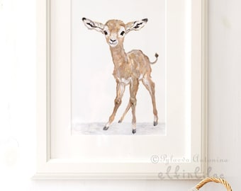 Baby Antelope - Giclee - Baby Animal Print - Zoo Nursery Print - Safari Nursery Art - Zoo Animal Print  - Baby Animal Nursery decor