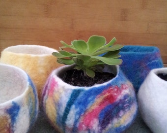 Handmade Cute felted bowls to house your succulents for the home or the office