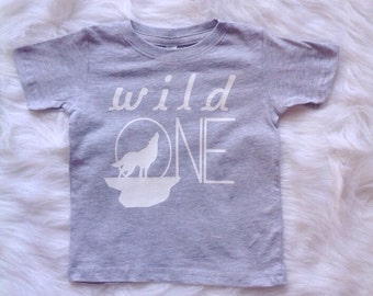 Wild One/1st birthday/ Cake Smash