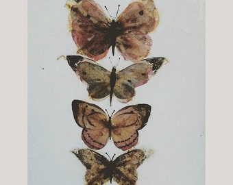 Pressed Flower Butterfly Anatomy Canvas