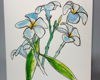 Greeting Card - White Oleander ~ Ink & Watercolour Drawing