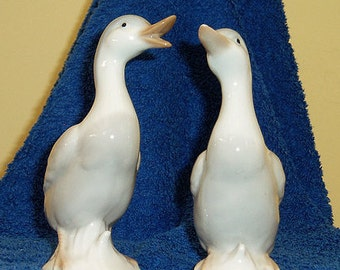 Two Little Ducks (Quack Quack)