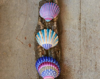 Wall decoration made with painted seashells