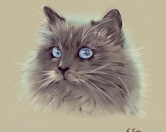 Custom Cat Portrait-Cat Portrait-Personalized Gift-Custom Pet Illustration-Wall Decor-Gift-Memorial Pet-Cat-Custom Made