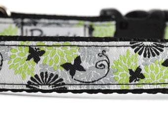 Butterfly Dog Collar, pretty dog collar, butterflies dog collar, spring dog collar, girl dog collar, boutique dog collar