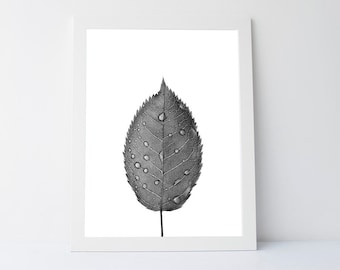 Leaf Wall Art, Leaf Art, Printable Leaf, Minimalist, Scandinavian art, Black and White, wall decor, Modern Printable Art, Wall Art Printable