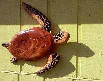 mahogany sea turtle