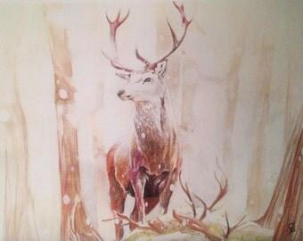 Deer Art - Winter Deer Detailed Forest Drawing (Print)