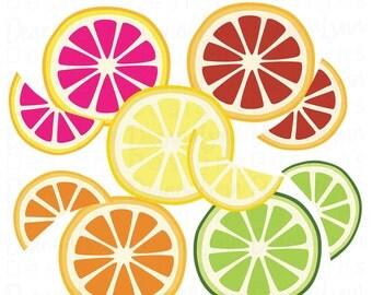 Citrus Oranges Lemons Limes Grapefruit Blood Oranges vector svg png pdf jpg