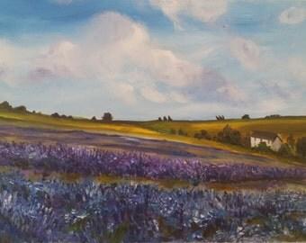 Landscape of Snowshill lavender farm field