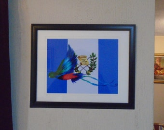 INSTANT DOWNLOAD Quetzal in the Guatemala Flag