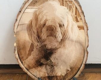 Custom - Pet Memorial - Pet Portrait - Dog Portrait - Custom Dog Portrait - Custom Pet - Portrait - Pet - Engraved Portrait -Custom Portrait