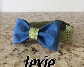 Dog with jeans - Lexie buckle collar