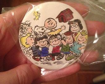 Hand painted Peanuts pin