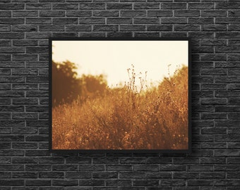 Dry Grass Photo - Grasses Photography - Meadow Photography - Nature Photography - Sepia Photography - Nature Wall Decor - Sepia Wall Decor