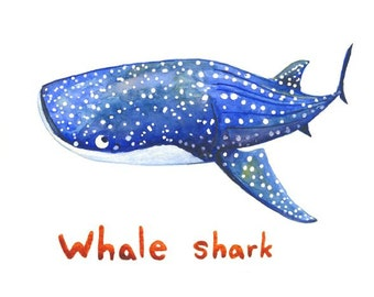 Whale shark watercolor print, sharks, gentle giant, wall art, decor, ocean art, ocean, painting, illustration, kids, nautical, science