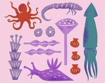 Print: Sea Creatures - Illustration Art Pink Octopus Squid Nautical Nature Sea Ocean Aquarium Hine Mizushima wall decor